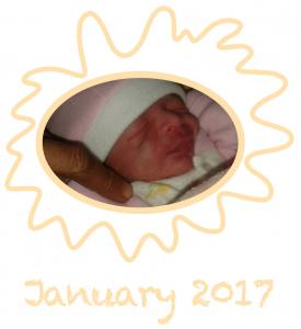 Bildschirmfoto 2017-02-27 um 17.03.34