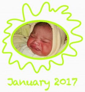 Baby_15